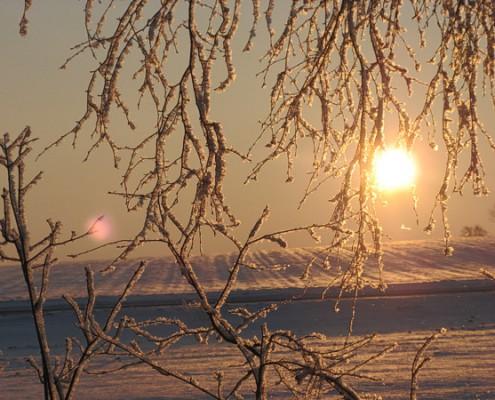 winter-ade